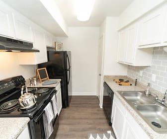 Kitchen, Aspen