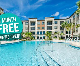 Satori Luxury Apartments, 33782, FL