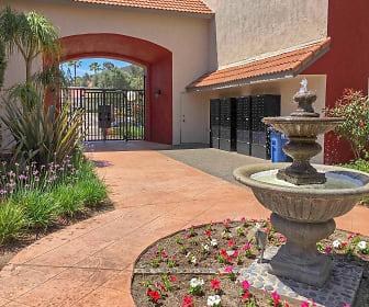Landscaping, Rancho Del Sol