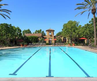 Pool, Shadow Oaks