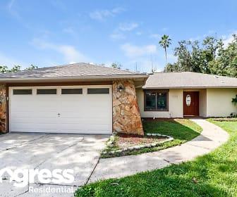 12223 Shadow Ridge Blvd, 34669, FL