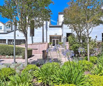 Stevens Creek Villas, Cupertino, CA