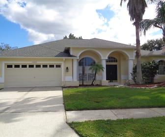 10042 Cypress Shadow Avenue, Hunters Green, Tampa, FL