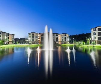 Lake, The Oasis at Town Center