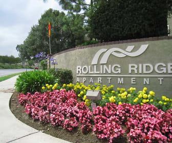 Landscaping, Rolling Ridge