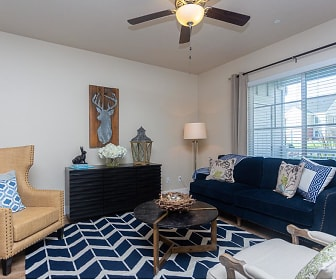 Living Room, Meadows at Park Avenue Apartments