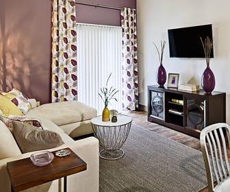 Living Room, Lakeline East Apartments