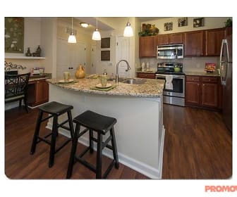 Kitchen, Park at Johns Creek Senior Residences