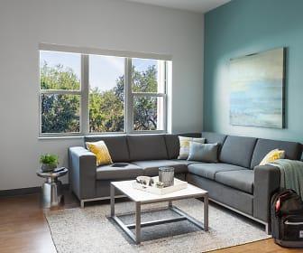 Living Room, Onyx