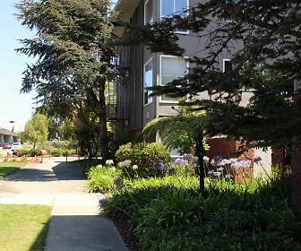 East 19th Avenue, San Mateo, CA