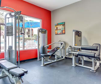 Fitness Weight Room, The Social at Tallahassee