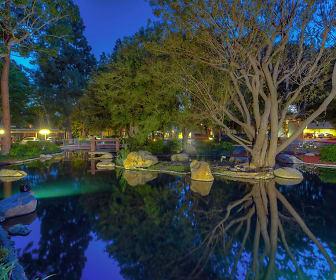 Lake Dianne, Tustin Foothills, CA