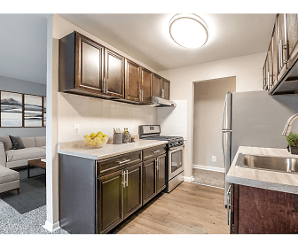 kitchen featuring stainless steel finishes, gas range oven, exhaust hood, dark brown cabinetry, light hardwood floors, and light granite-like countertops, 101 North Ripley