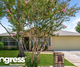 10803 Fern Terrace Dr, Southbelt   Ellington, Houston, TX