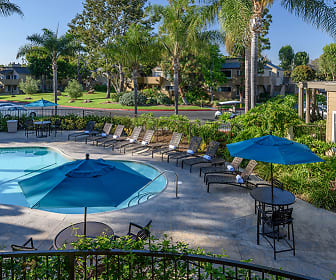 Resort-style Pool and Spa with Wi-Fi, Woodbridge Apartments