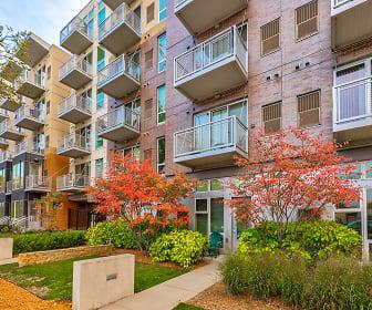 Uptown 2 Bedroom Apartments For Rent Minneapolis Mn 149 Rentals