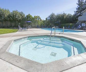 Pool, 1776 Apartments