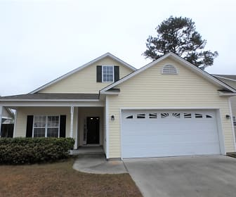 1311 Windsor Pines Court, Currie, NC