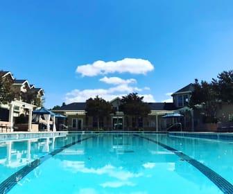 Pool, Forge Homestead