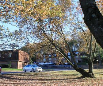 Hollow Run Apartments, Immaculata University, PA