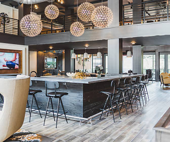 Upscale club room with entertainment kitchen, shuffleboard, ping pong, indoor-outdoor fireplace, and screened-in porch, Modera Vinings