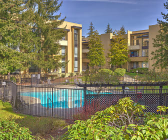 12 Central Square, Northwest Bellevue, Bellevue, WA