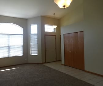 343 Coneflower Drive, 60447, IL