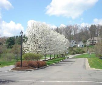 Landscaping, WoodsEdge