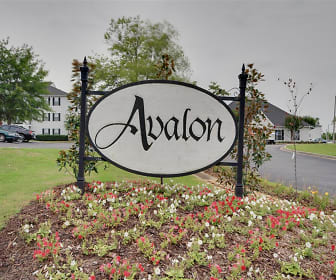 apartments for rent in starkville ms, Avalon Apartments