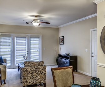 Living Room, The Village of Ballantyne Apartment Homes