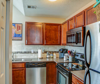 Kitchen, Orpheum Tower