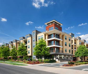 Cielo Apartments, Myers Park, Charlotte, NC