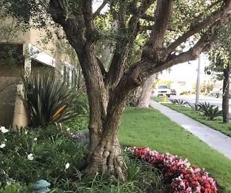 Building, Florida Gardens