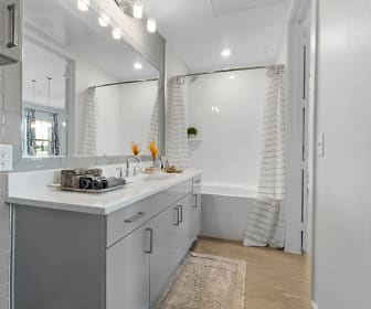 The Luxe at Mercer Crossing, 75234, TX