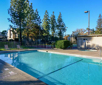 Pool, Quail Ridge