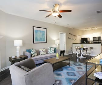 Living Room, The Point at Oak Mountain