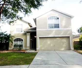 1439 Scotch Pine Drive, Providence Lakes, Brandon, FL
