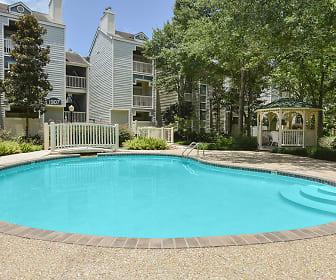 Pool, Chestnut Creek