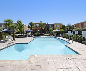Pool, Palm Terrace
