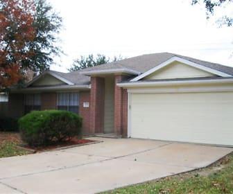 1703 Oak Valley Drive, 77565, TX