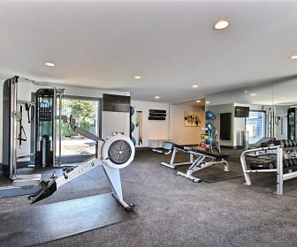 Fitness Weight Room, Driftwood Apartments
