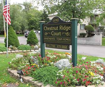 Chestnut Ridge Court, Cambria, NY