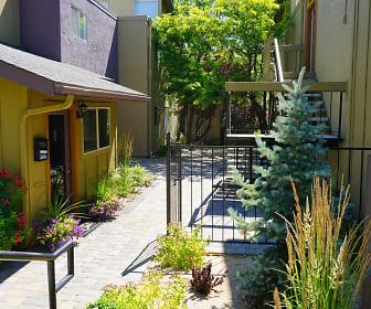 Courtyard, Plumas Garden