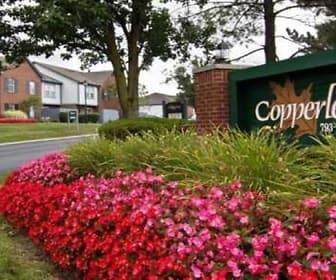 Copperleaf, Albert Chapman Elementary School, Powell, OH