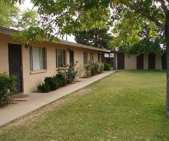 Pinefield, Kleinman Park, Mesa, AZ