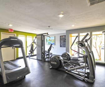 Fitness Weight Room, The Arts Apartments