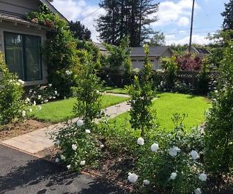 265 Pine Lane, Palo Alto, CA