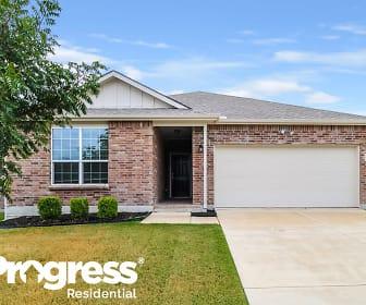 3020 Pinyon Pl, Melissa, TX