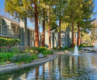 Wood Creek, John F Kennedy University, CA