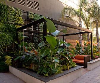 Misora at Santana Row, San Jose, CA